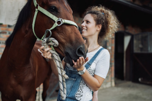 Girl holding a horse